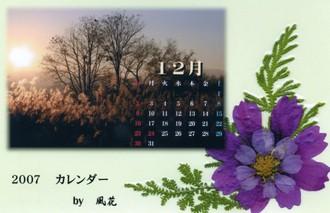 押し花と夕暮れフォト