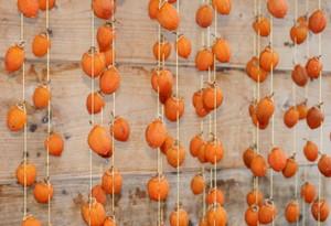 板塀の前の吊るし柿