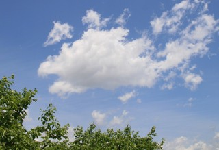 柿畑の上の形雲