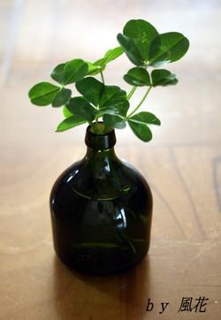 ボトル型一輪挿しの四つ葉