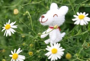 編みぐるみの犬