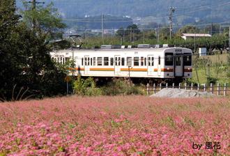 赤そばと電車