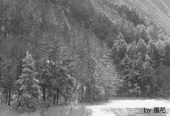 積雪の山肌