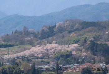 万寿山を望む