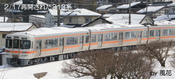 2/17雪を乗せた313系