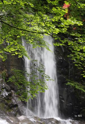 こもれびの滝の一部