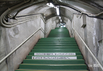 階段がいっぱい