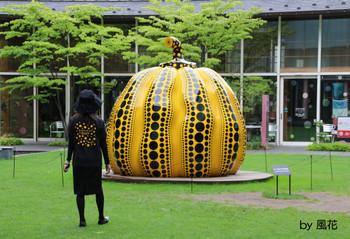 中庭の黄色いかぼちゃ